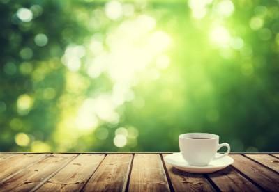 Kaffee, das schwarze Gold