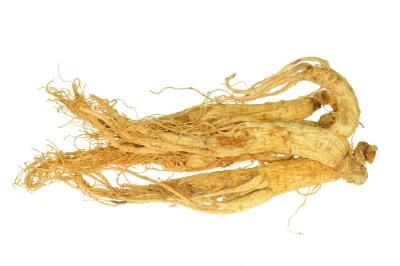 Ginseng-Wurzeln