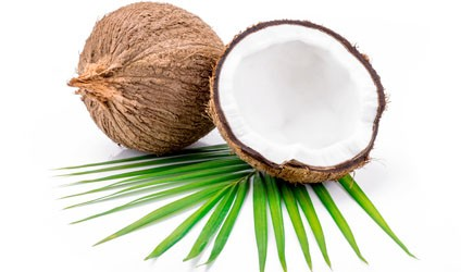 Kokosmus aus der Kokosnuss
