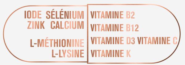 Ingrédients des gélules de zinc