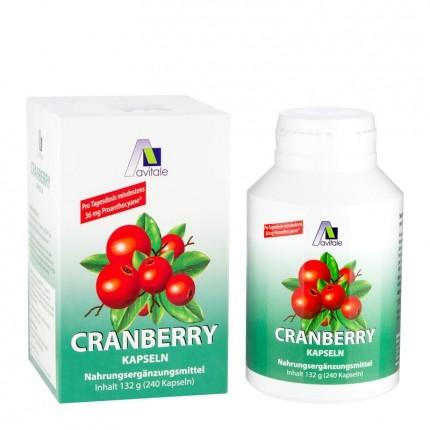 Avitale Cranberry (240 Kapseln)