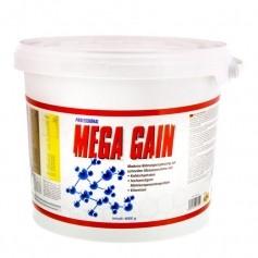 BMS Mega Gain Professional Vanille, Pulver