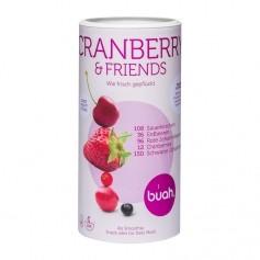 Buah gefriergetrocknete Früchte, Cranberry & Friends