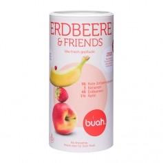Buah gefriergetrocknete Früchte, Erdbeere & Friends