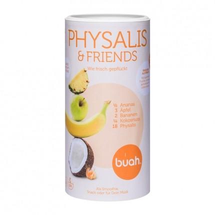 Buah gefriergetrocknete Früchte, Physalis & Friends