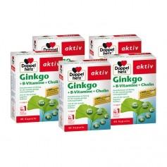 5 x Doppelherz Ginkgo + B-Vitamine, Kapseln