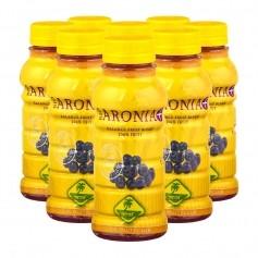 8 x Aronia Smoothie Bio