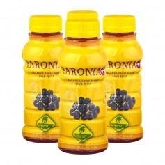 4 x Aronia Smoothie Bio