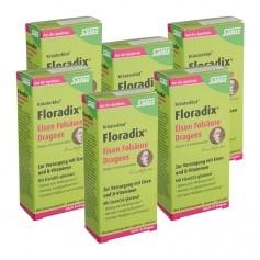 6 x Floradix Eisen Folsäure, Dragees