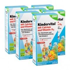 6 x Floradix Kindervital mit Calcium