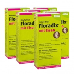 6 x Floradix mit Eisen, Tonikum