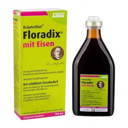Kräuterblut mit Eisen (700 ml)