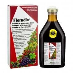 Floradix Kräuter und Eisen
