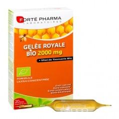 Forté pharma, Gelée royale bio, 20 ampoules