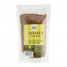 Govinda Alfalfa-Keimlinge Bio