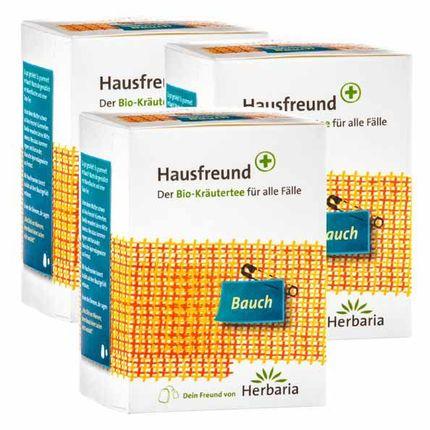 3 x Hausfreund Bio Kräutertee Bauch, Filterbeutel