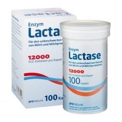 Lactase 12000 Kapseln