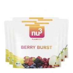 6 x nu3 Flavorites Berry Burst Økologisk Smoothie, Pulver