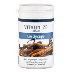 Cordyceps Vitalpilz Extrakt Kapseln