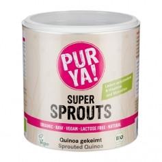 PURYA! Bio Super Sprouts - Quinoa gekeimt, Pulver