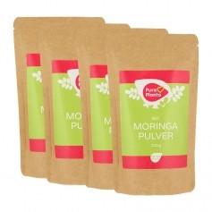 PURA MORINGA poudre de feuilles de Moringa Bio