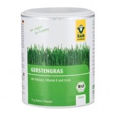 Raab Vitalfood Bio Gerstengras Pulver