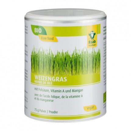 Raab Vitalfood Weizengras, Pulver