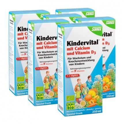 Floradix Kindervital mit Calcium und Vitamin D3 (6 x 250 ml)
