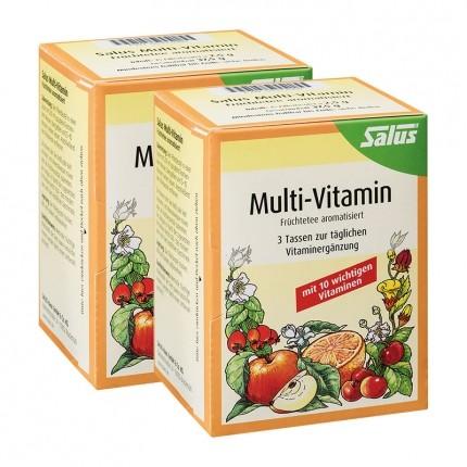 Salus Multi-Vitamin, Früchtetee (2 x 37,5 g)