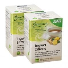 Salus Bio Gourmet Ingwer Zitrone Tee