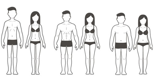Durchschnittliche Körpertyp Frauen
