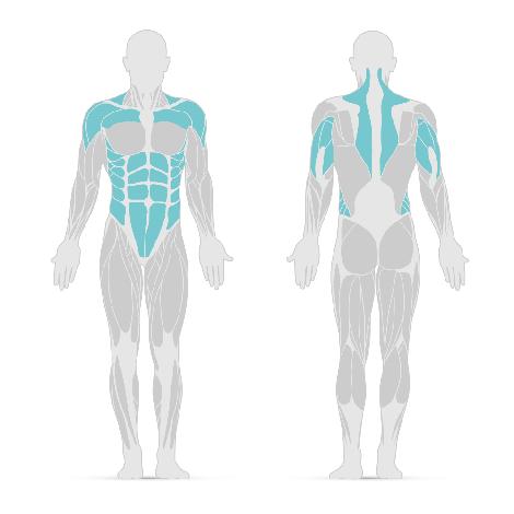 Schulterdrücken - Lerne hier die beste Schulterübung der Welt | nu3